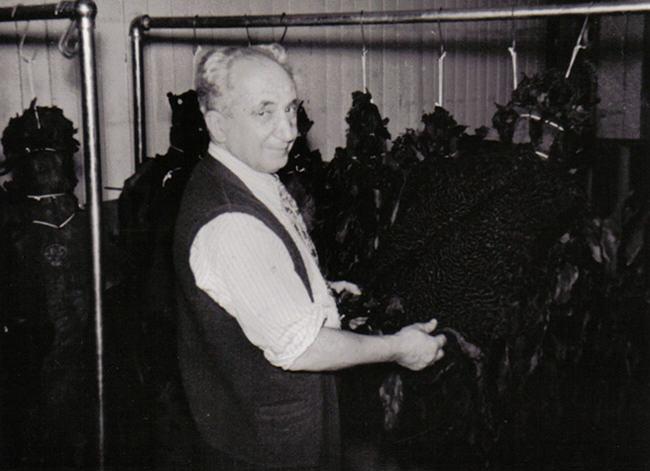 fur family, Armand Herscovici