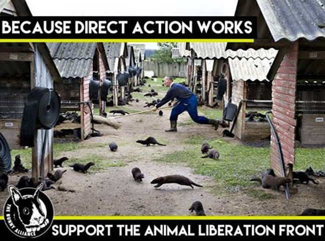 animal rights terrorism, economic sabotage, direct action