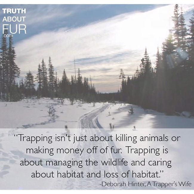 fur in the news, fur, trapper, canada