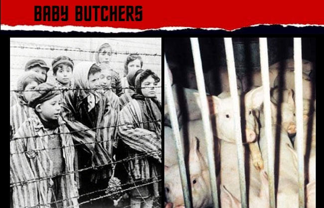 animal rights, alan herscovici, fur, holocaust, peta