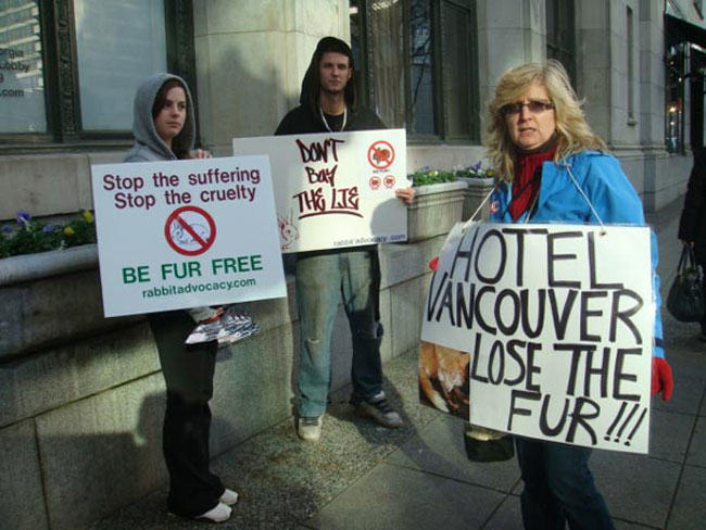 animal rights, alan herscovici, fur, Hotel Vancouver, protest