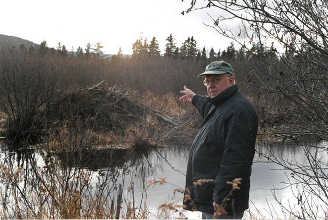 Neal Jotham, beaver