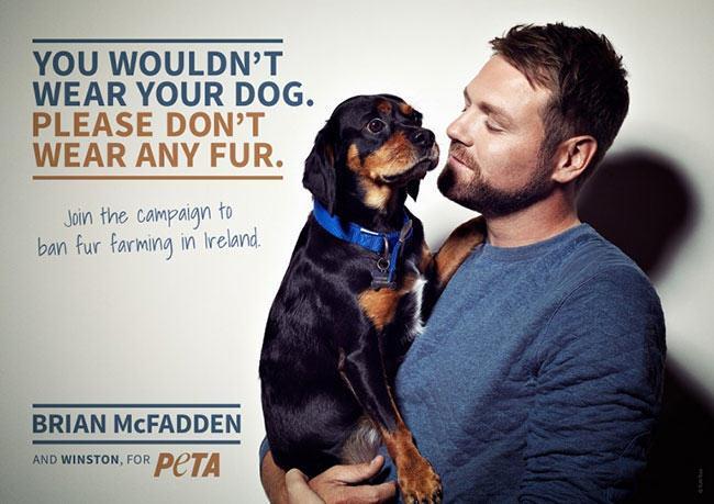 Hypocrite Profile: Brian McFadden