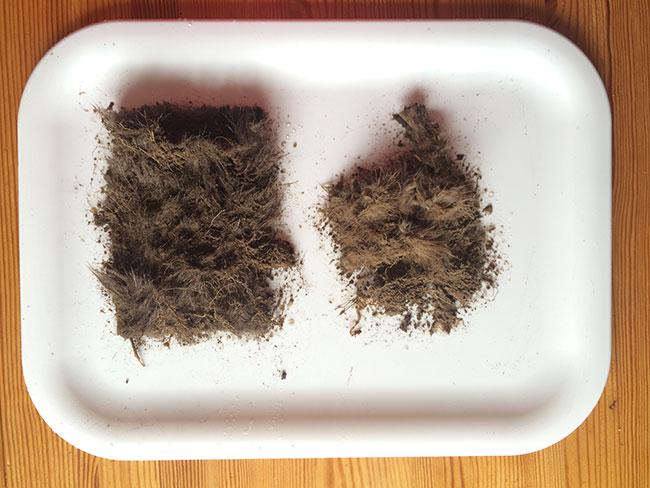fur burial, mink, fake fur, real fur, biodegradable, sustainable