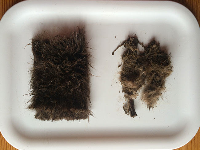 fur burial, mink, fake fur, real fur, biodegradable, sustainable