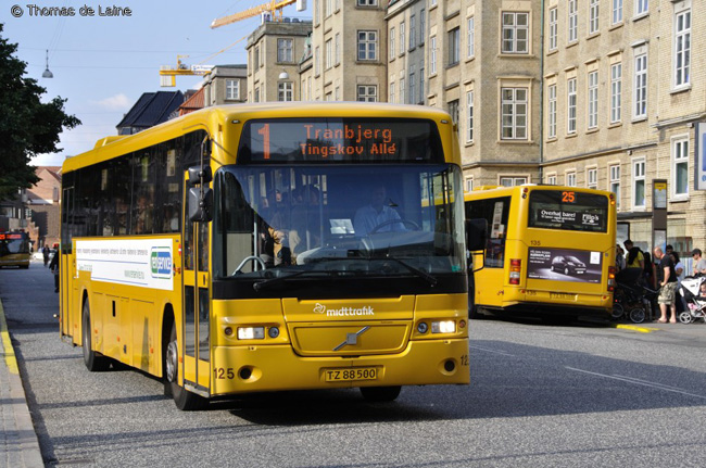 Aarhus bus, mink oil, fur, ethical, ethical clothing