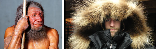 10CoolFactsYou May Not Know About Fur