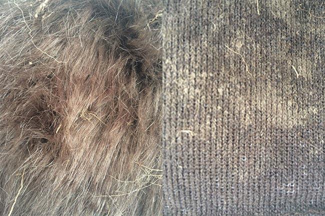 great fur burial, fur is green, eco fashion