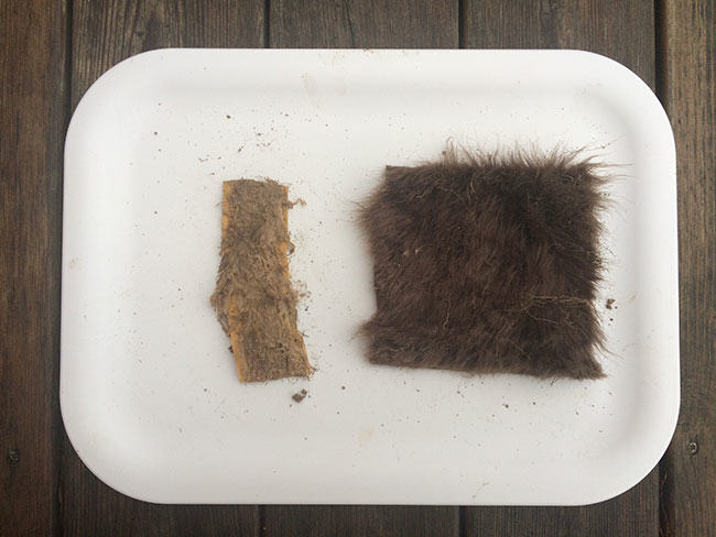 great fur burial, fur is green, eco fashion