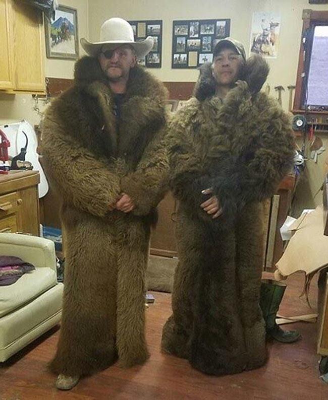 buffalo, fur coat, buffalo hide