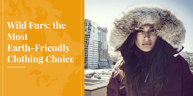 Wild Furs: An Earth-Friendly Clothing Choice