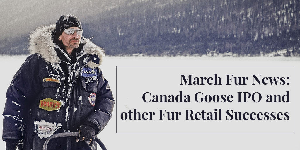 March Fur News: Canada Goose IPO and Other Fur Retail Successes