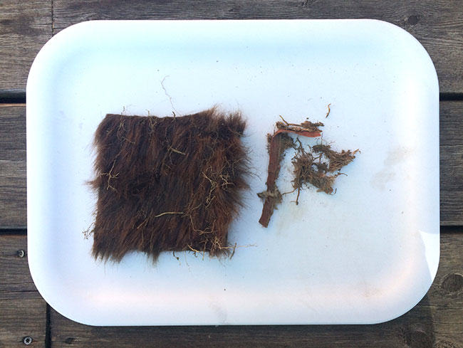 fur samples on tray