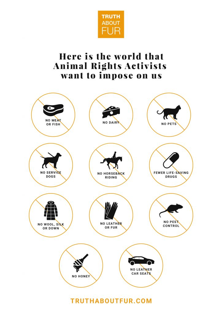 Animal Welfare Vs Animal Rights  An Important Distinction