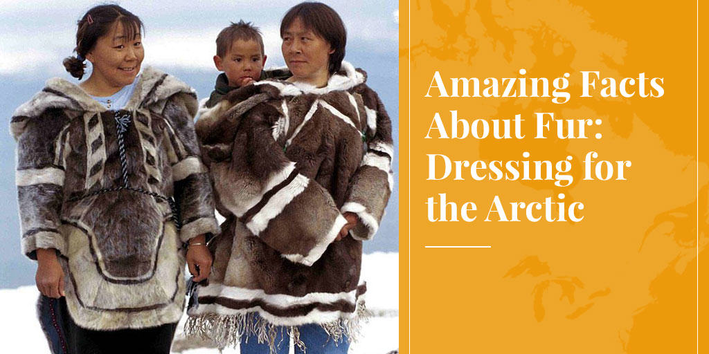 Amazing Facts About Fur: Dressing for the Arctic
