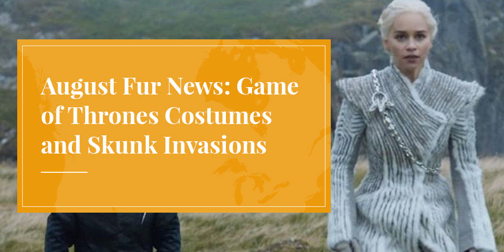 August Fur News: Game of Thrones Costumes and Skunk Invasions