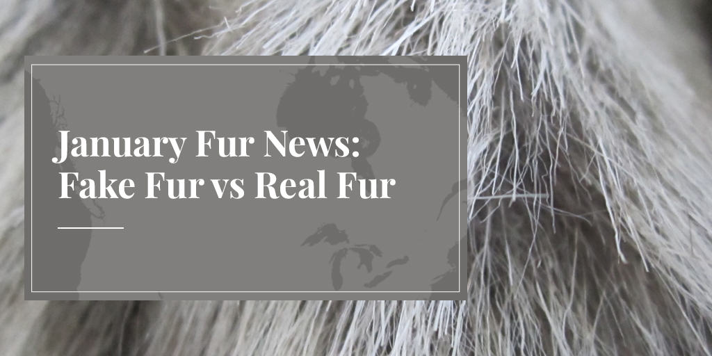 January Fur News: Fake Fur vs Real Fur