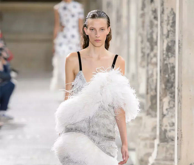 feathers in fashion