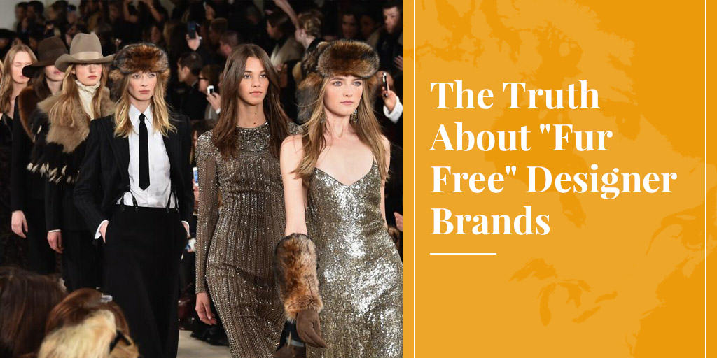 "The Truth About ""Fur Free"" Designer Brands"