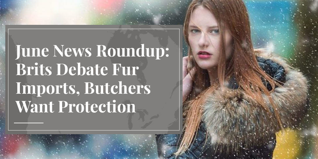 June News Roundup: Brits Debate Fur Imports, Butchers Want Protection