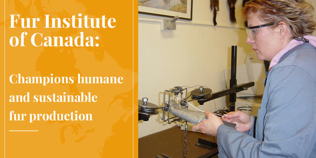 Fur Institute of Canada Champions Humane and Sustainable Fur Production