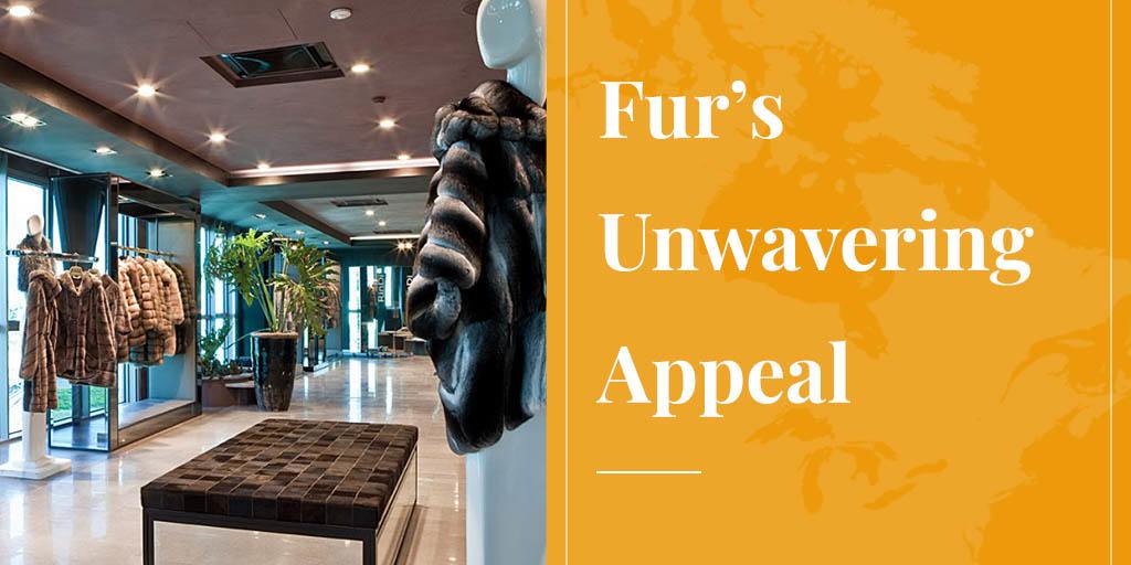 fur's unwavering appeal