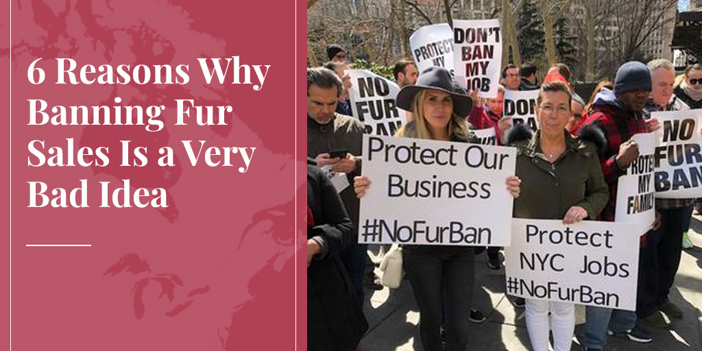 6 Reasons Why Banning Fur Sales Is a Very Bad Idea