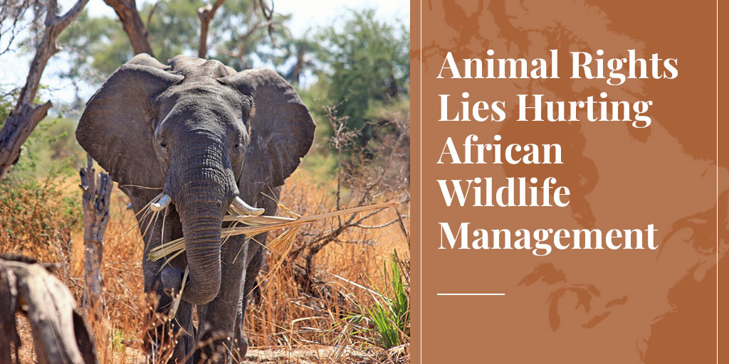 Animal Rights Lies Hurting African Wildlife Management