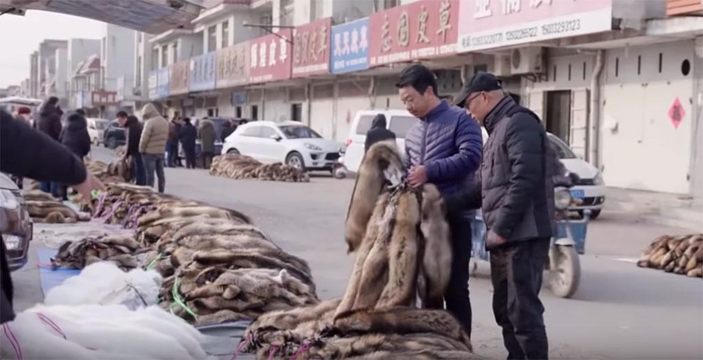 Shancun fur market