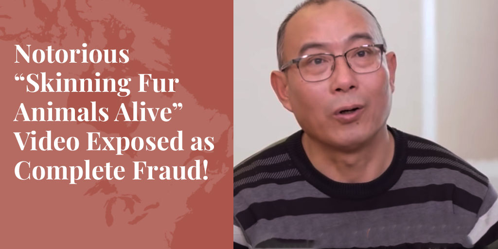 "Notorious ""Skinning Fur Animals Alive"" Video Exposed as Complete Fraud!"