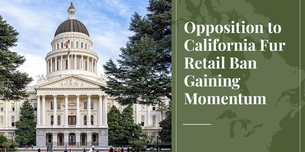 Opposition to California Fur Retail Ban Gaining Momentum