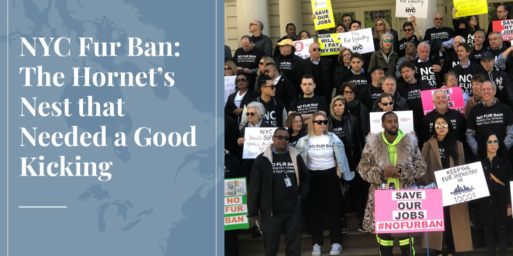 NYC Fur Ban: The Hornet's Nest that Needed a Good Kicking