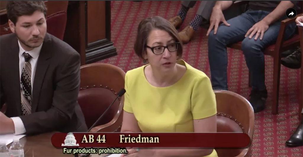 Laura Friedman wants to ban fur