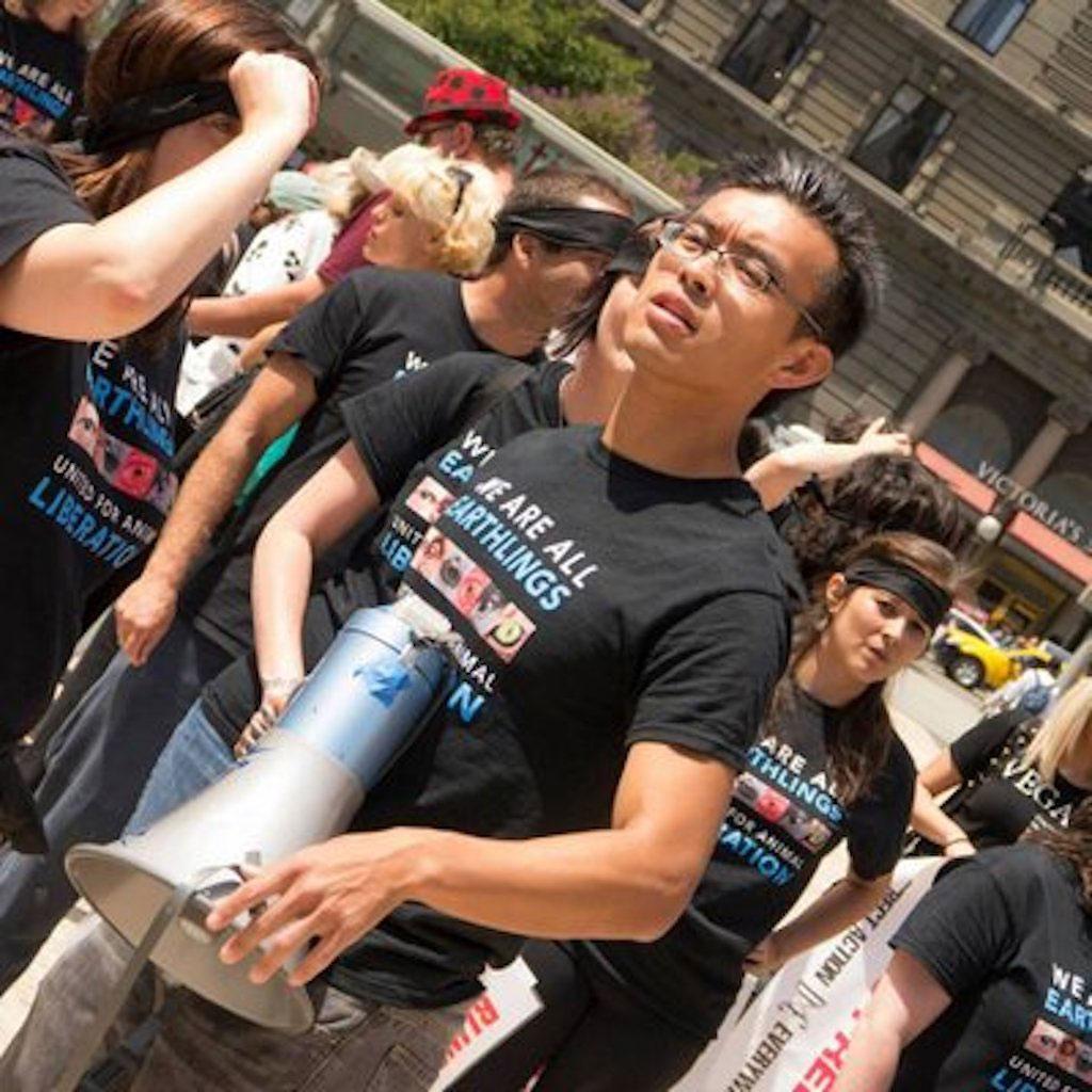 Wayne Hsiung practices animal activism