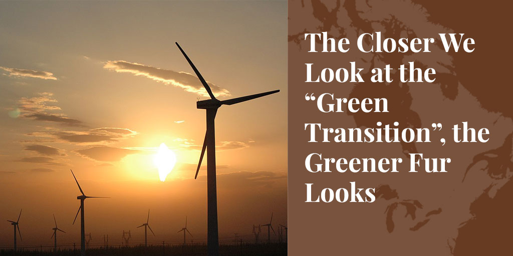 "The Closer We Look at the ""Green Transition"", the Greener Fur Looks"