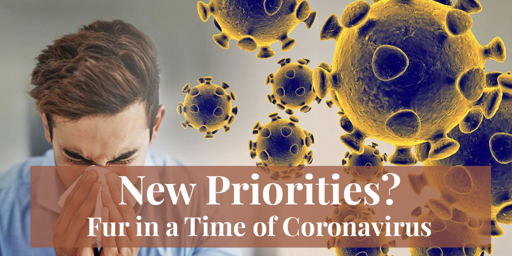 New Priorities? Fur in a Time of Coronavirus