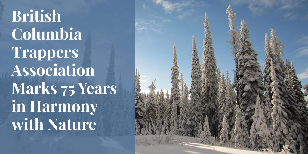 British Columbia Trappers Association Marks 75 Years in Harmony with Nature