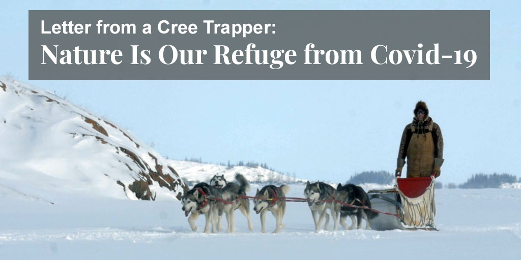 Letter from a Cree Trapper: Nature Is Our Refuge from Covid-19