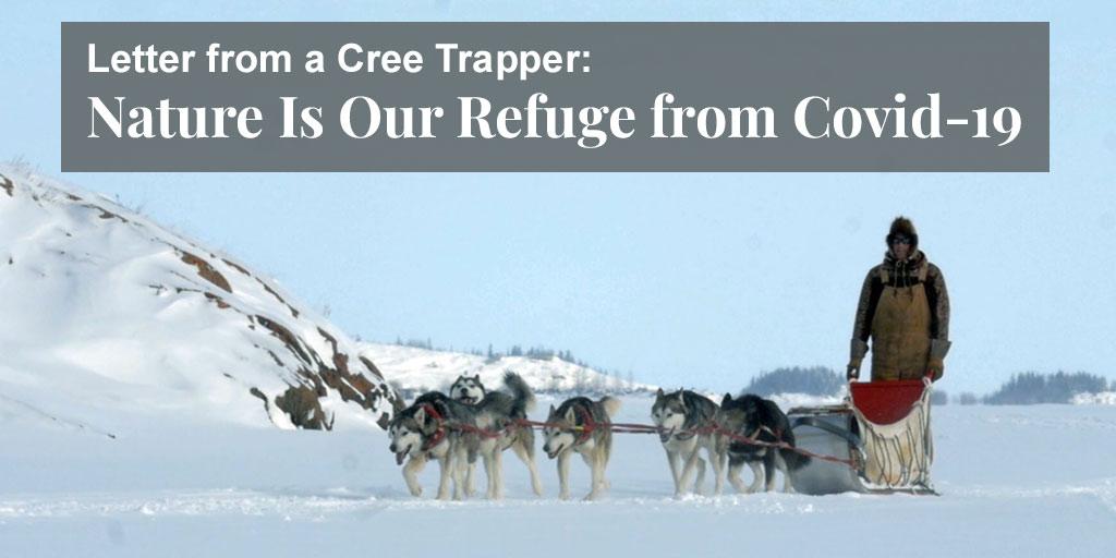 Cree trapper on Covid-19