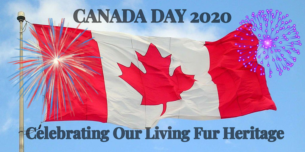 Canada Day 2020: Celebrating Our Living Fur Heritage