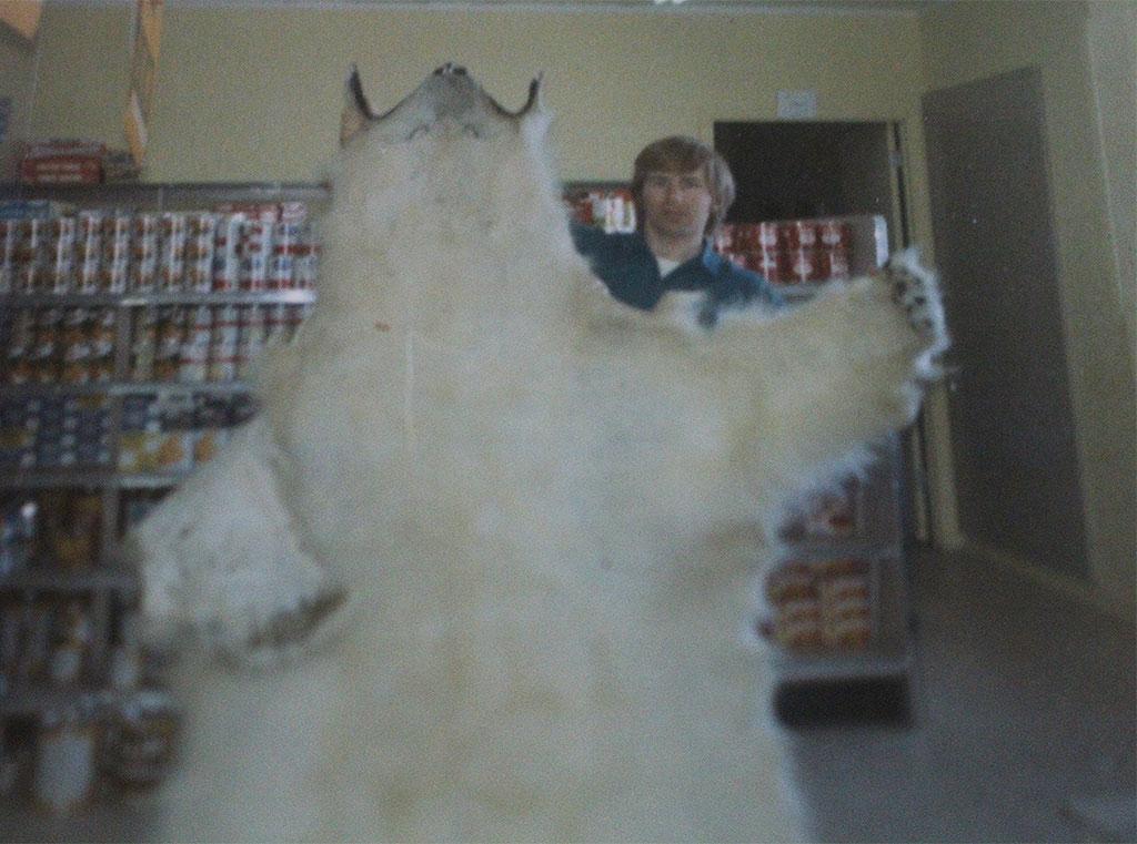 kabloona grading polar bear