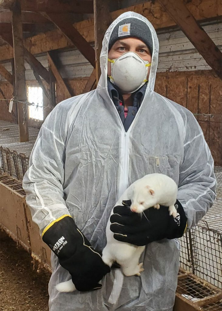 mink farmer in full PPE