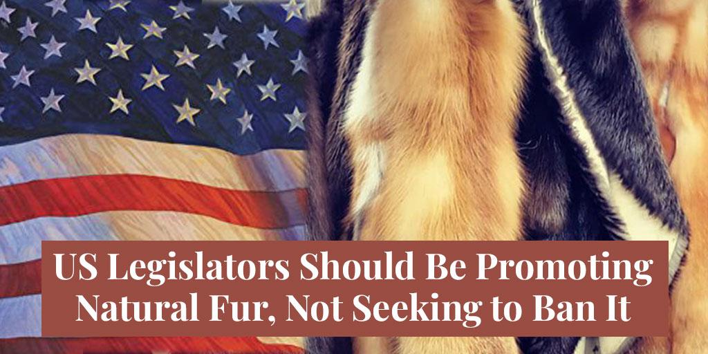 US Legislators Should Be Promoting Natural Fur, Not Seeking to Ban It