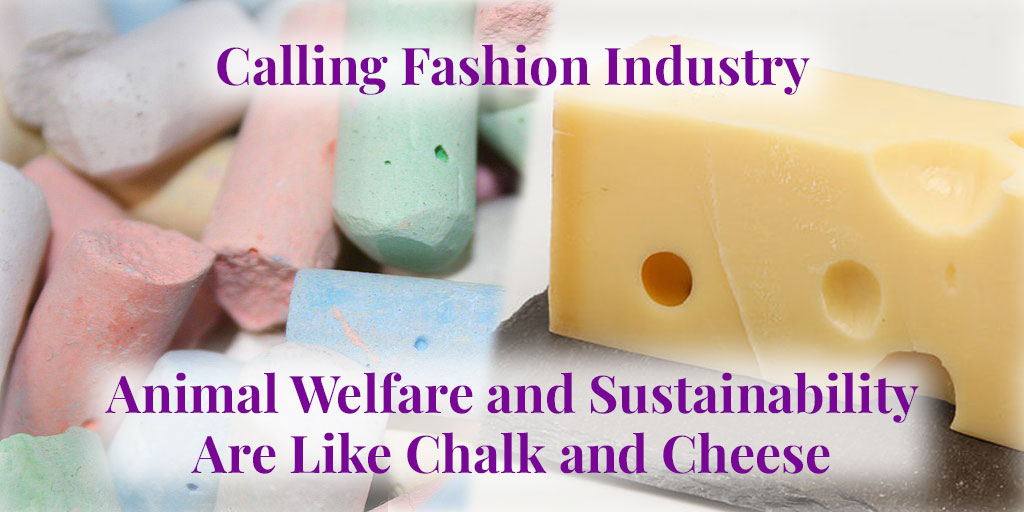 animal welfare and sustainability like chalk and cheese